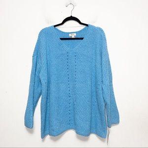 Style & Co Blue V Neck Soft Sweater